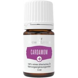 Kardamom+, ätherisches Öl,...