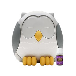 Feather the Owl Diffuser...